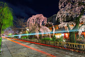 Gion in Kyoto with traffic trail and sakura tree — Stock Photo