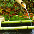 Stock Photo: Ladle in Japanese temple