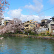 Stock Photo: Kyoto residential district