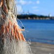 Stock Photo: Fishery net