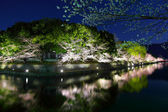 Biwa lake canal with sakura tree — Stock Photo