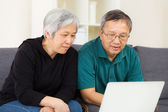 Senior couple surfing on internet at home  — 图库照片