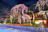 Gion city with sakura tree at night — Stock Photo
