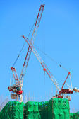 Construction crane in site — Stock Photo