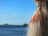 Fishing net for fishing industry — 图库照片