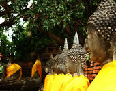 Aligned buddha statue in Ayutthaya — Stock Photo