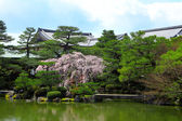 Japon stili köşk tropikal Bahçe — Stok fotoğraf