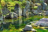 Japan garden with lake — Stock Photo