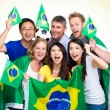Brasilian Supporter with different ethnicities — Stock Photo #46855323