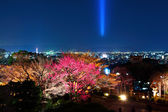 Japanese temple in Kyoto city at night — Stock fotografie