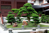 Chinese traditional garden  — Foto de Stock