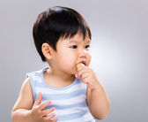 Little boy eat cookie — Stock Photo