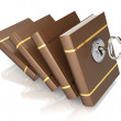 Row of books with key — Stock Photo #38619525