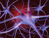 Neurons — Stockfoto