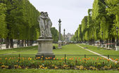 Paris, Luxembourg garden. — Stock Photo