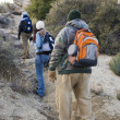 Three Hikers Hiking — Stock Photo