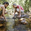 Stock Photo: Friends With Hands In Water At Forest Stream