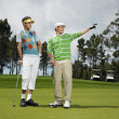 Male Friends Golfing Together — Stock Photo #21787097
