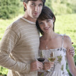 Couple With Wineglasses At Field — Stock Photo