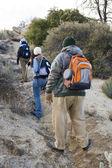 üç yürüyüşçü hiking — Stok fotoğraf