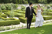 Newlywed Couple In Park — Stockfoto