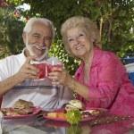 Senior Couple Toasting Glasses Of Drinks — Stock Photo #21790183
