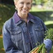 Woman Holding Bunch Of Muddy Carrots — Stock Photo #21790315