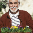 Senior Man Holding Tray With Flowerpots — Stock Photo
