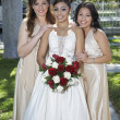 Quinceanera Standing With Female Friends — Stock Photo #21791443