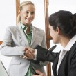 Businesswomen Shaking Hands — Stock Photo #21796341
