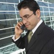 Stock Photo: Businessman On Call