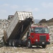 Truck Unloading Garbage At Site — Stock Photo #21797583