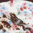 Fork And Cake Crumbs On Plate — Stock Photo #21798871