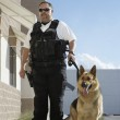 Security Guard With Dog On Patrol — Stock Photo #21799917