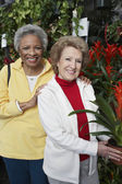 Senior Female Friends At Botanical Garden — Stockfoto