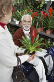 Woman Showing Potted Flower To Elderly Man In Botanical Garden — Stock Photo