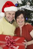 クリスマス ツリーを持ってギフト ボックス立っている多民族のカップル — ストック写真