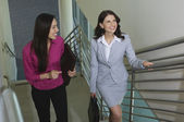 Female Colleagues Moving Up On Stairway — Stock Photo