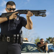 Police Officer With Shotgun — Stock Photo