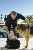 Police Dog Sniffing Bag — Stock Photo