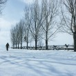 Person Walking In Snow — Stock Photo