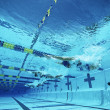 Swimmers Swimming In Pool — Foto de Stock