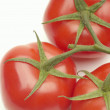 Fresh Red Tomatoes - Stock Photo