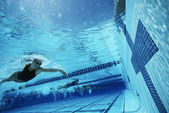 Swimmers About To Touch Finishing Line During A Race — Foto Stock