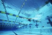 在游泳池中游泳的游泳 — 图库照片