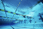 Swimmers Swimming In Pool — Stock Photo
