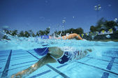 Female Swimmer Swimming In Pool — Stock Photo