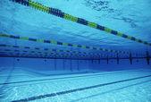 Rijstroken in zwembad — Stockfoto