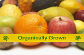 Organically Grown Fruits With Yellow Tape — Stock Photo