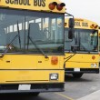 Parked School Buses - Stock Photo